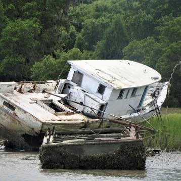 savannah trip2011 132